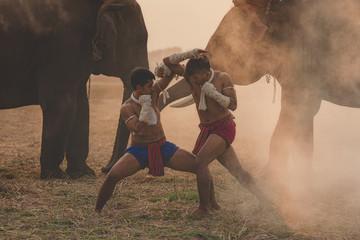 7 самых странных боевых искусств в мире