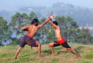 Как выглядит боевая йога