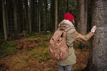 Как выжить в лесу, если вы одни и вы заблудились