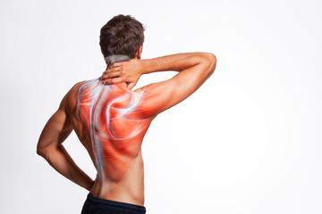 С помощью каких упражнений можно снять мышечный тонус спины