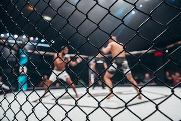 Удастся ли Тайсону завоевать мир MMA