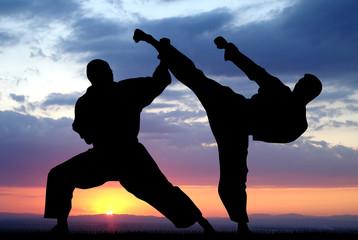 Боевые искусства, как образ жизни профессионала