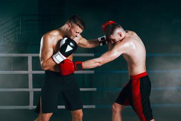 """Какие боксеры лучше других """"пробивали печень"""""""