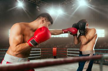 Почему бокс является основой всех боевых искусств