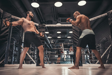 Тренировка действий в состоянии нокдауна