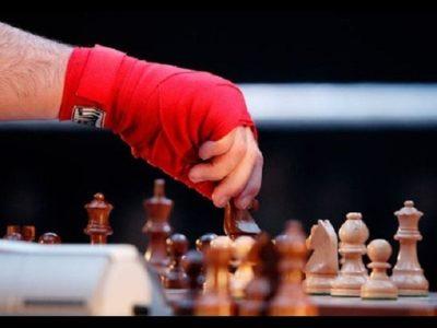 Шахбокс - в чем суть игры