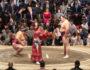 Что собой представляет сумо