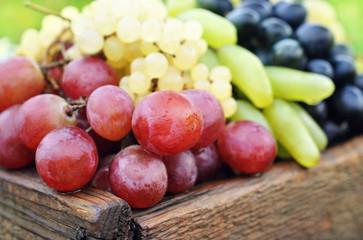 Опасна ли для организма виноградная косточка