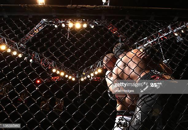 Что связывает боксера Тайсона и мир ММА