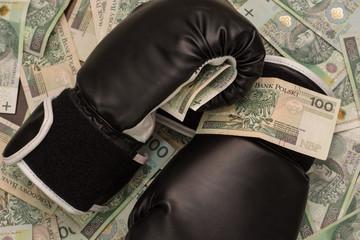 5 титулованных боксеров, сколько составляют их гонорары