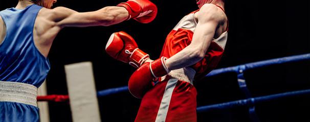 Этот поединок подверг риску профессиональный бокс