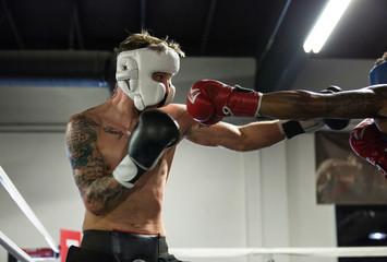 Какие мышечные группы важны для бойца