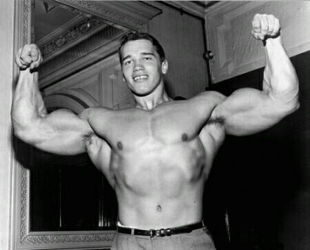 Какие упражнения делал Арнольд, чтобы достичь таких размеров рук