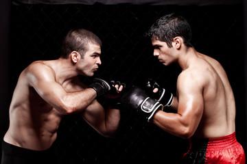 Трештокинг в боксе - что это такое