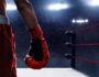 Кого можно считать великим боксером