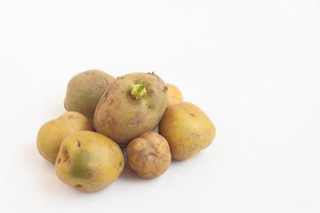 Может ли навредить зеленый картофель организму человека
