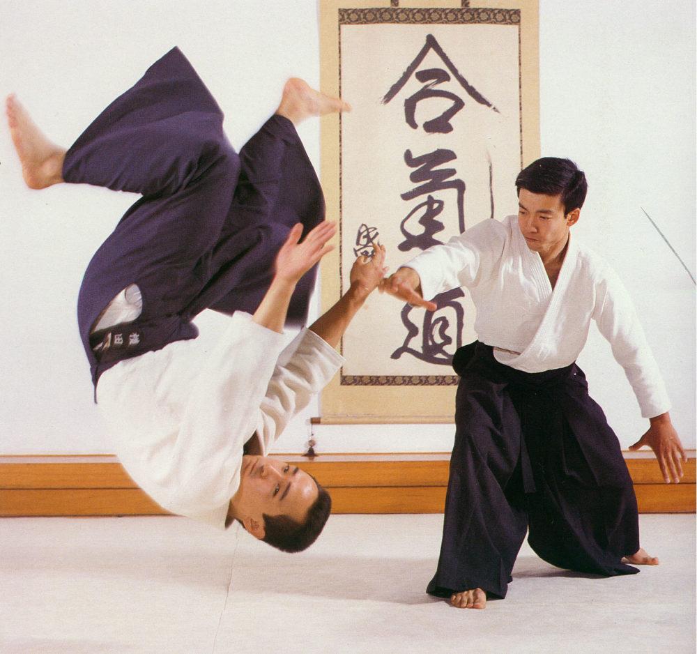 Что собой представляет боевое искусство айкидо